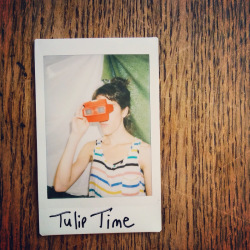 listener-enjoying-tulip-time-viewmaster-chapbooks-ryan-van-winkle-dan-gorman